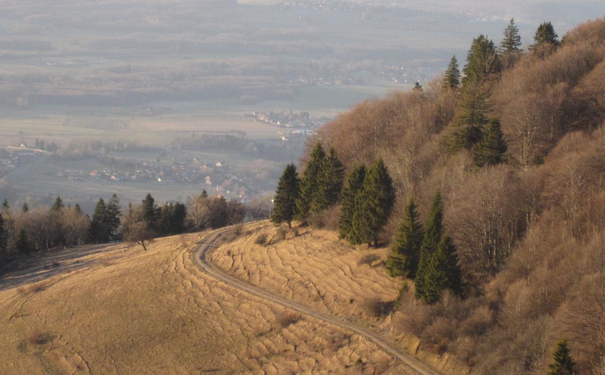 Chemin de la Thuile