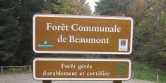 panneau forêt communale de Beaumont